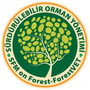 SOY-Logo