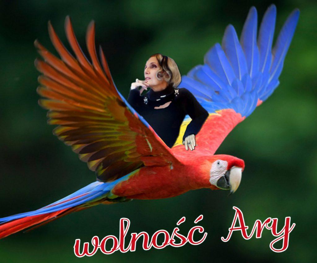Wolność Ary